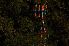 Lichter der Stadtt