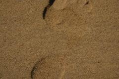 Oktober Meer